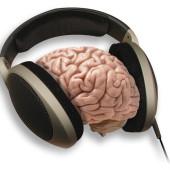 brainphonesx